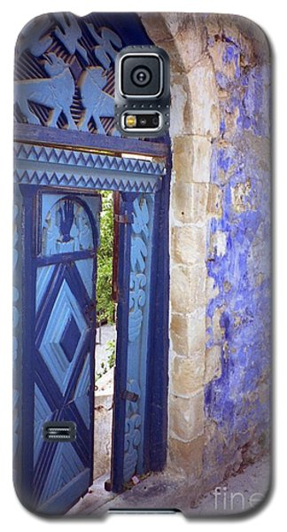 Safed Door Galaxy S5 Case