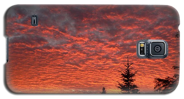 Galaxy S5 Case featuring the photograph Sailor's Delight by Laurel Best