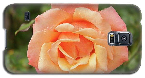 Salmon Rose Galaxy S5 Case