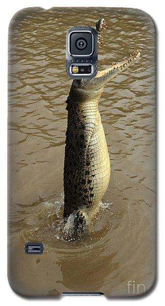 Salt Water Crocodile Galaxy S5 Case by Bob Christopher