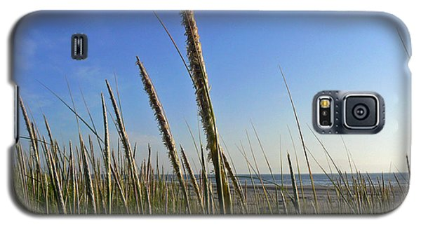 Sand Dune Grasses Galaxy S5 Case by Pamela Patch