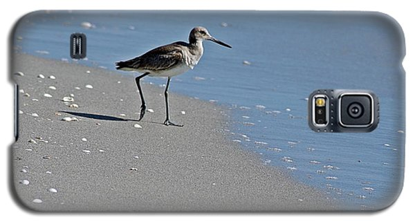 Sandpiper 2 Galaxy S5 Case