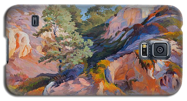 Sandstone Canyon At Torrey Pines Galaxy S5 Case