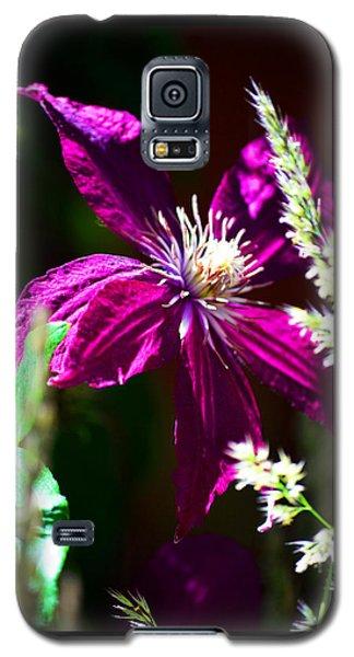 Galaxy S5 Case featuring the photograph Santa Fe Summer by Susanne Still