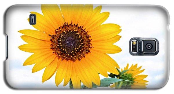 Sassy Sunflower Galaxy S5 Case by Elizabeth Budd