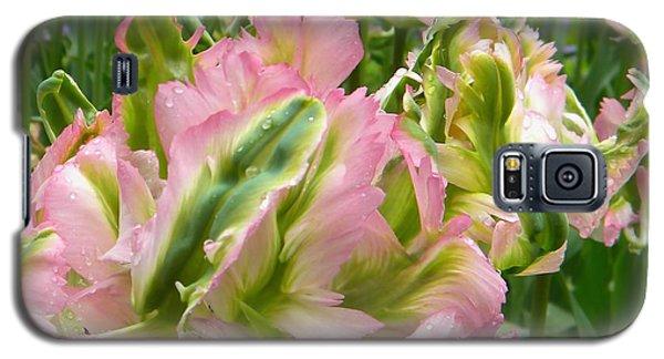 Sauvage Tulipes Galaxy S5 Case