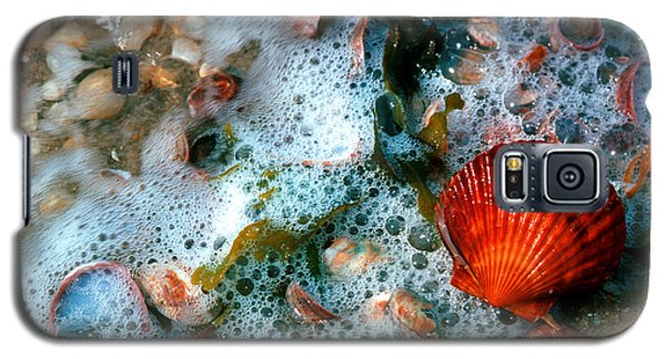 Galaxy S5 Case featuring the photograph Scallop And Seaweed 11c by Gerry Gantt