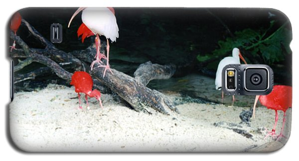 Galaxy S5 Case featuring the photograph Scarlet Ibis And Spoonbills by Maureen E Ritter