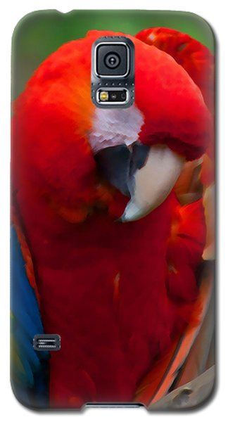 Galaxy S5 Case featuring the photograph Scarlet Macaw by Cindy Haggerty