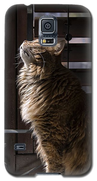 Galaxy S5 Case featuring the photograph Scient Of Spring by Raffaella Lunelli