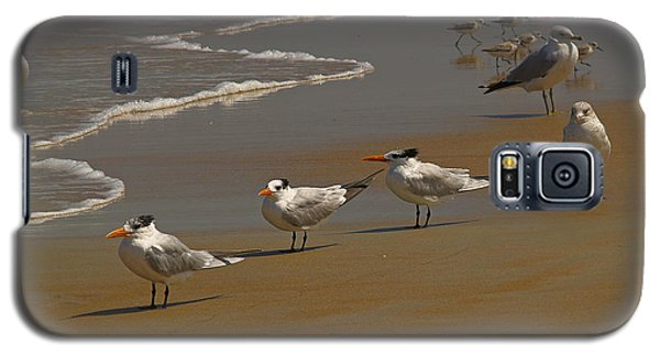 Sand And Sea Birds Galaxy S5 Case