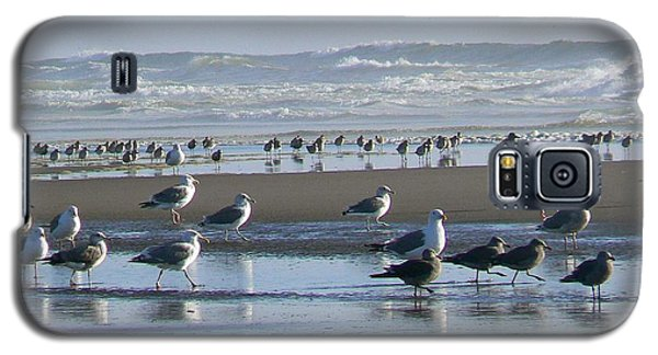 Sea Gulls And Breakers Galaxy S5 Case