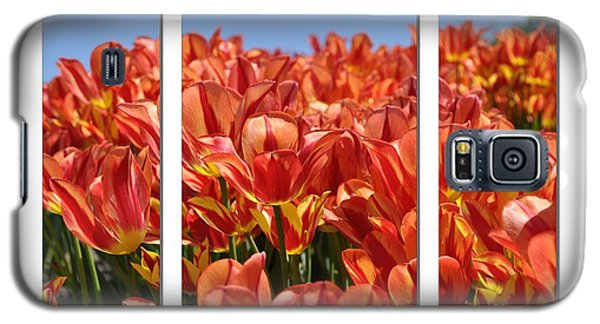 Sea Of Tulips Galaxy S5 Case by Elaine Manley