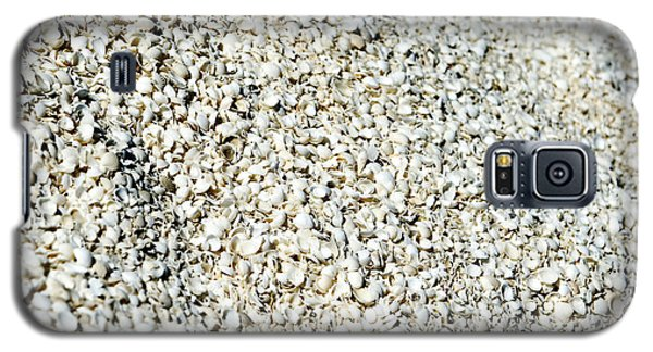 Galaxy S5 Case featuring the photograph Sea Shells by Yew Kwang