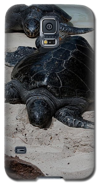 Sea Turtles Galaxy S5 Case