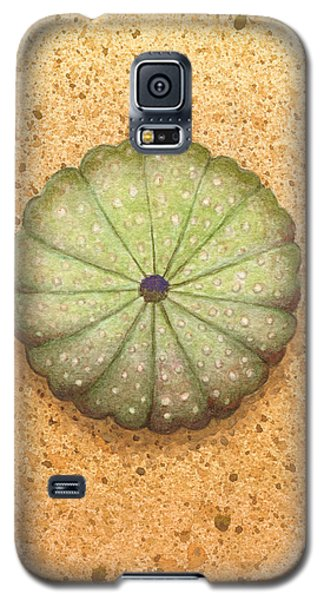 Sea Urchin Galaxy S5 Case by Katherine Young-Beck