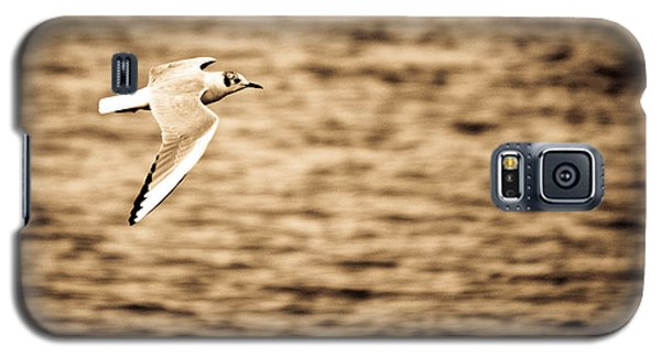 Seagull Antiqued Galaxy S5 Case