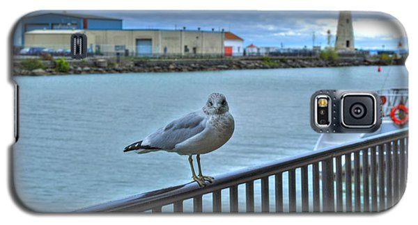 Galaxy S5 Case featuring the photograph Seagull At Lighthouse by Michael Frank Jr