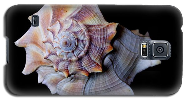 Galaxy S5 Case featuring the photograph Seashell 5 by Deniece Platt