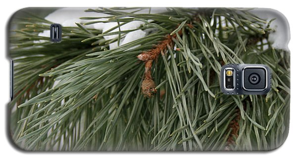 Seasons Greetings Galaxy S5 Case