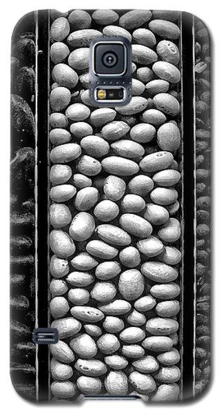 Seeds Galaxy S5 Case