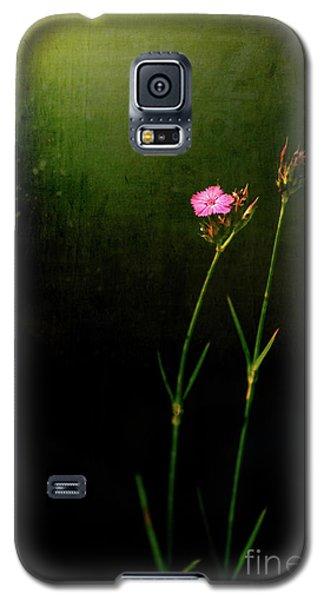 Seeking Light Galaxy S5 Case by Silvia Ganora