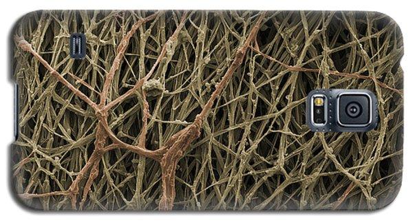 Sem Of Mycelium On Mushrooms Galaxy S5 Case by Ted Kinsman