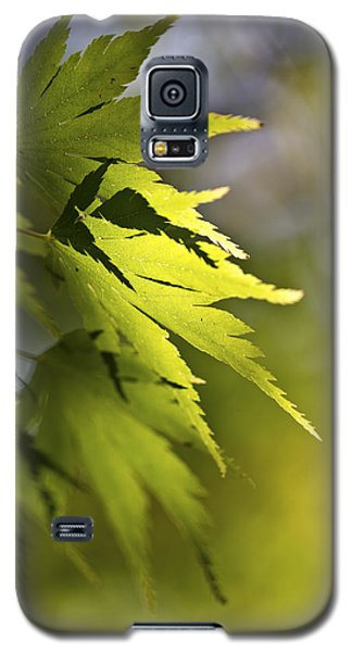 Galaxy S5 Case featuring the photograph Shades Of Green And Gold. by Clare Bambers