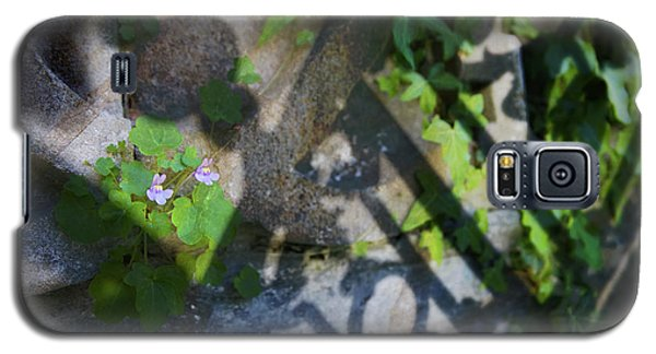 Galaxy S5 Case featuring the photograph Shadow Garden by Richard Piper