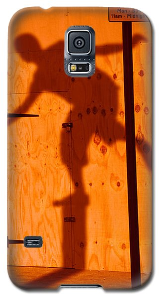 Galaxy S5 Case featuring the photograph Shadow Play  by Richard Piper