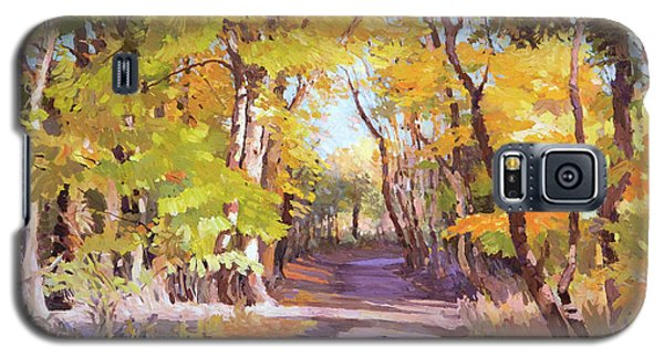 Shady Path At Fall In The Woods Galaxy S5 Case