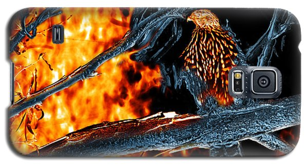 Sharp Shinned Hawk 0112 Fire And Ice Art Galaxy S5 Case