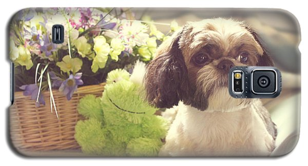 Shih Tzu Ginger Galaxy S5 Case