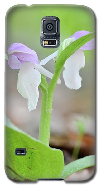 Showy Orchis Galaxy S5 Case