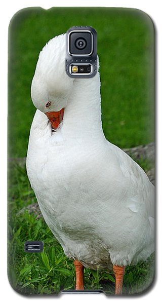 Galaxy S5 Case featuring the photograph Shy Goose by Lisa Phillips