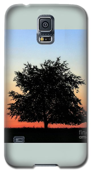 Make People Happy  Square Photograph Of Tree Silhouette Against A Colorful Summer Sky Galaxy S5 Case