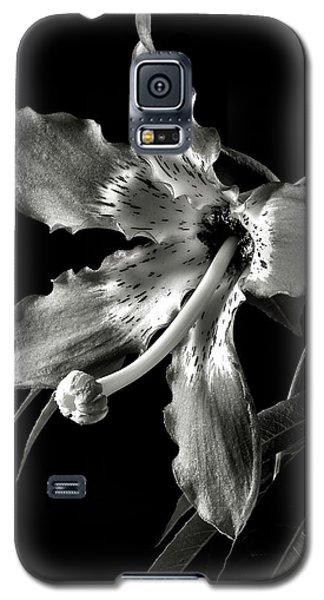 Silk Flower In Black And White Galaxy S5 Case