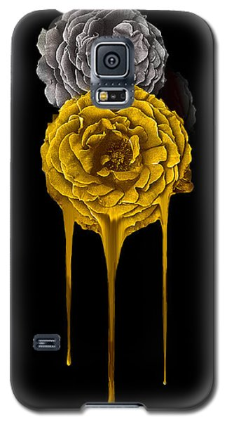 Silver And Gold Galaxy S5 Case