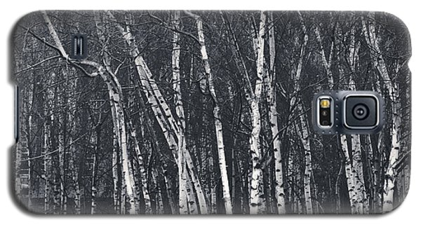 Silver Trees Galaxy S5 Case