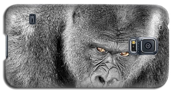 Galaxy S5 Case featuring the photograph Silverback Staredown by Jason Politte