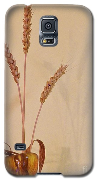 Galaxy S5 Case featuring the photograph Simplicity And Sustenance by Judy Via-Wolff