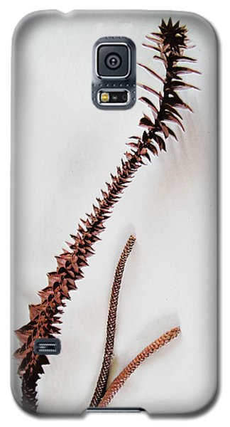 Galaxy S5 Case featuring the photograph Simplicity by Ginny Schmidt