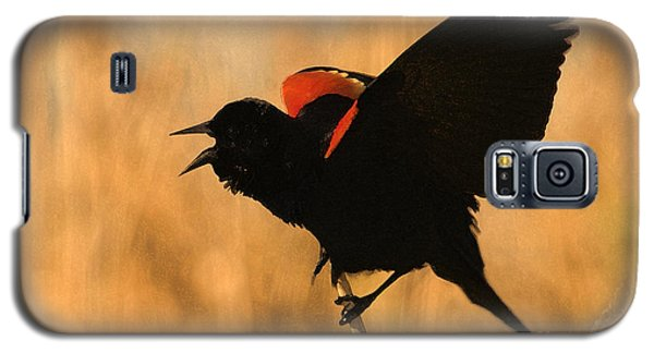 Singing At Sunset Galaxy S5 Case by Betty LaRue