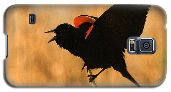 Singing At Sunset Galaxy S5 Case