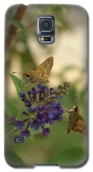 Galaxy S5 Case featuring the photograph Skipper by Heidi Poulin