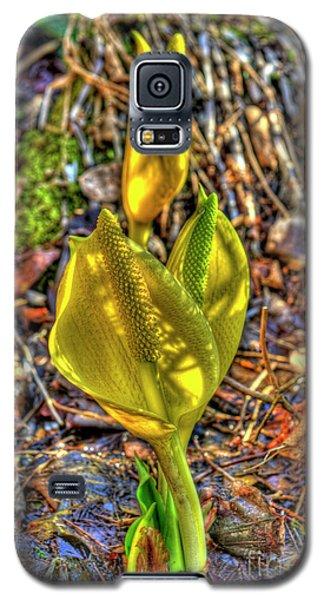 Skunk Cabbage - 2 Galaxy S5 Case by Rod Wiens