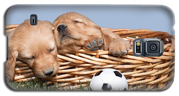 Sleeping Puppies In Basket And Toy Ball Galaxy S5 Case