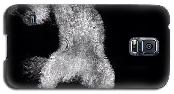 Sleep...sleep Galaxy S5 Case