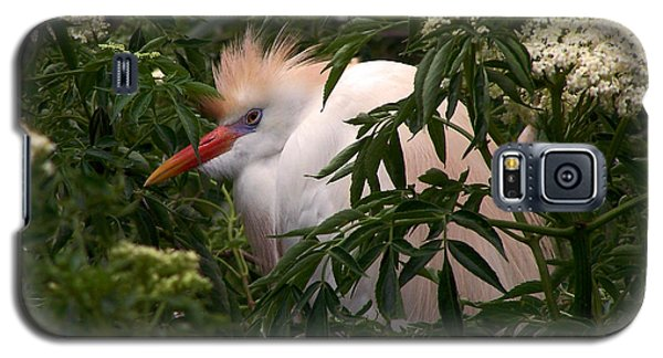 Sleepy Egret In Elderberry Galaxy S5 Case
