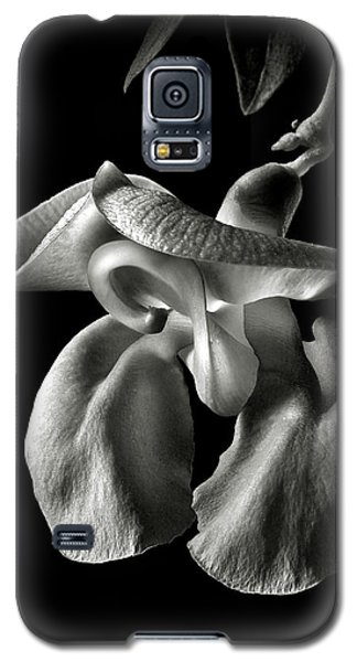 Snail Flower In Black And White Galaxy S5 Case